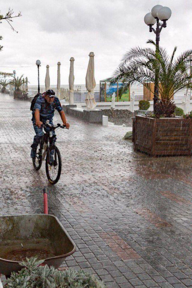 Некоторые люди наслаждаются дождем, другие просто промокают.  -Боб Марли.