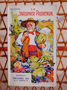 Le potager provençal - Rose Philange