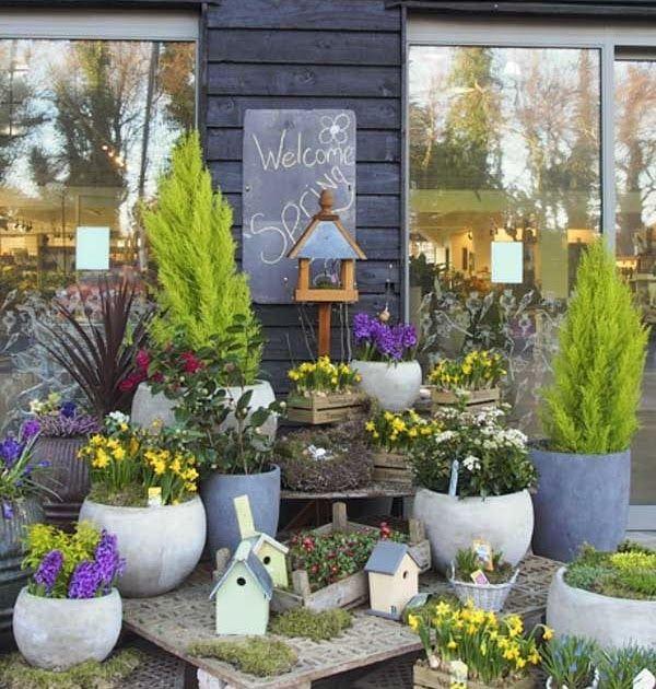 Image Result For Garden Center Malahide Image Result For Garden