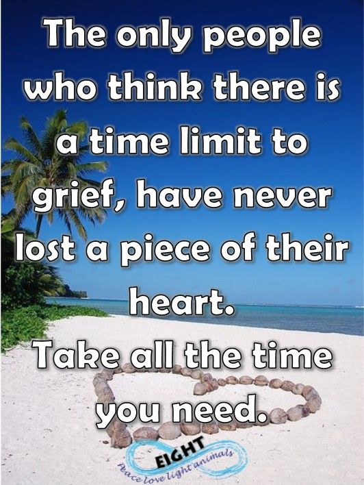 I always knew this was true, but I never realised how vast, the black hole of grief is.  There is no measurement.  Your heart stretches so far - even though you never thought you would love that deeply again - your heart opens again and lets another beautiful soul into it.  Letting go is never easy.  take all the time you need!!!
