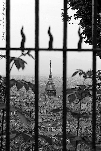 Torino  vista da Villa Genero - Torino - Piemonte - Italia