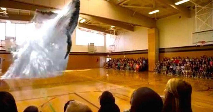 Magic Leap es la compañía que podría hacer posible terminar con el cautiverio de millones de animales en el mundo, es la necesidad del ser humano por conocer y aprender de ciertos animales la que le lleva a crear zoológicos o parques de atracciones con animales que no podríamos ver en nuestro día a día. Sin embargo, el sufrimiento de estos animales al estar en espacios reducidos es completamente innecesario e injusto, es por eso que contar con la tecnología del 3D y los hologramas sería una…