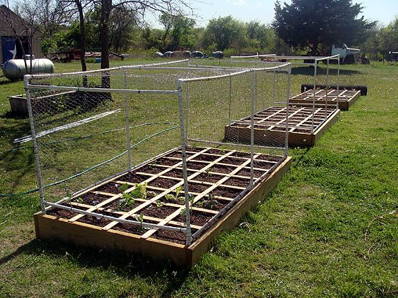 monica you can get all your years veggies doing this type of garden and the fences make it deer proof
