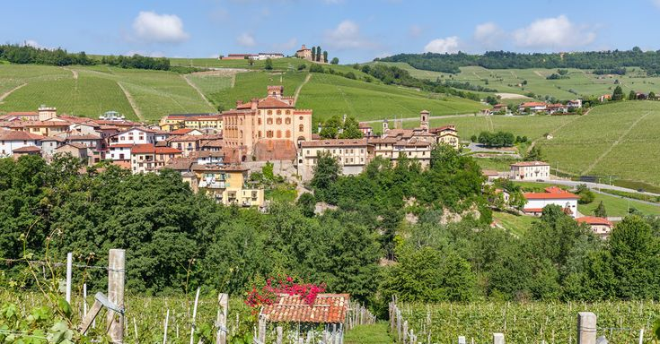 The Essential Guide To Buying And Enjoying Barolo Wine
