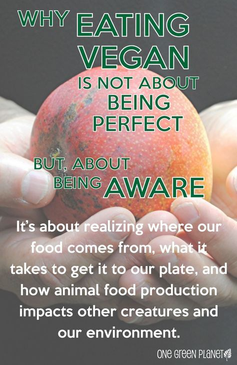 Why eating Vegan doesn't mean being perfect