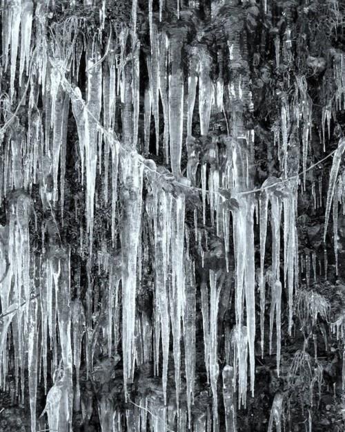 647 best images about Snow Queen on Pinterest  Ice queen, Haute