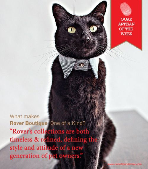 For the distinguished cat.  Meet @Matty Chuah Rover Boutique our artisan of the week!