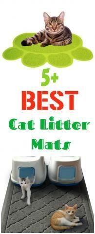 5+ Best Cat Litter Mats That Prevent The Spread Of Cat Litter...see more at PetsLady.com -The FUN site for Animal Lovers