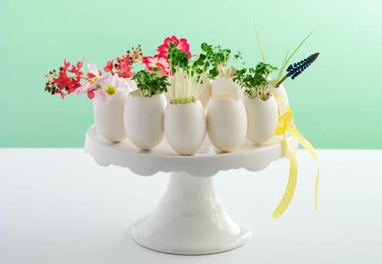 Basteltipp Ostereier mit Kresse und Blumen