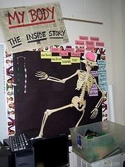 Science Bulletin Boards