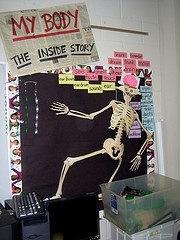 Science Bulletin Boards .. maybe can turn this in for help on a project someday
