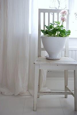 white chair and pink geranium