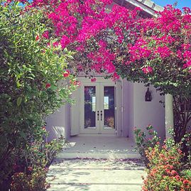 Nassau , New Providence, Bahamas island home | Caribbean home | Lavender with bougainvillea | Projects | Trace Design Studio | Residential Interiors | Miami, FL