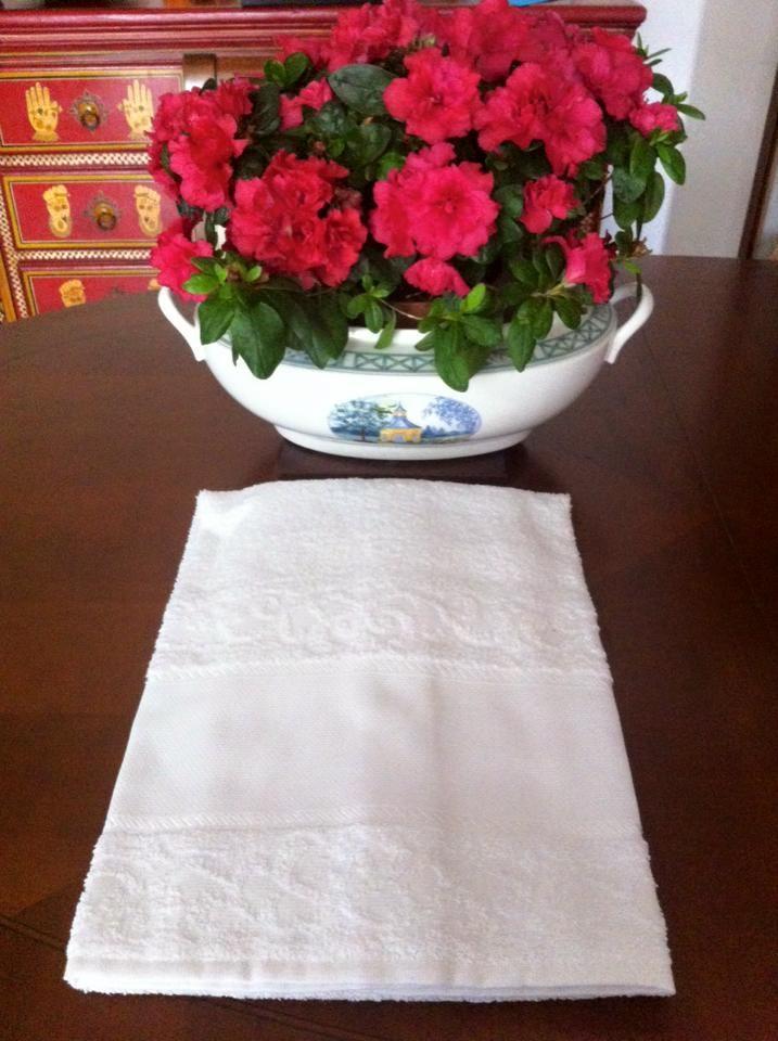 coppie di spugna con tela aida a 6,00€ in bianco