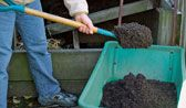 Making Compost-Leaf mold is something gardeners can never have too much of. It is useful in container plantings, in the ground, and on the ground. You can use it as an amendment to loosen up clay soil and as an attractive mulch. And nothing could be easier than making leaf mold: All you really need is leaves and time.