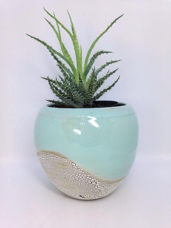 Succulent Planter Ceramic Flower Pot Pottery Planter Large Cactus Pot Stoneware Planter Rustic Planter H Ceramic Flower Pots Flower Pots Pottery Planters