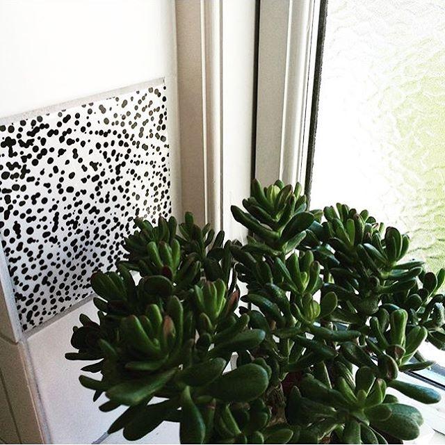 From plain white window to cozy little corner 👍 #badeværelse #dekoration #diy #makeover #hjem #scandinaviandesign #bolig #indretning #danishdesign #bathroom #tiledecor #decor #interior #nordic #nordicliving #diy #boligmagasinet #design #homejunkie