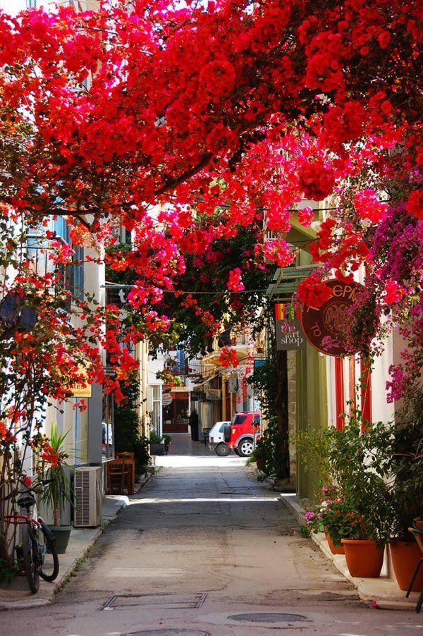 こんな道を毎日歩きたい! 世界の美しすぎる花や木に覆われた並木道   STYLE4 Design