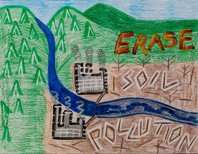 lesson plan on pollution Explain the effects of water, land and air pollution on environment and suggest ways to reduce them .