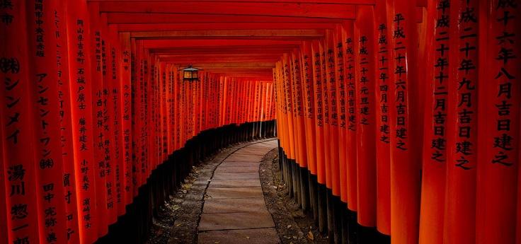 Torii (Fushimi Inari)