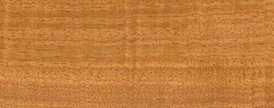 Wood Species for Hardwood Floor Medallions, Wood Floor Medallions, Inlays, Wood Borders and Block parquet - DOUSSIE