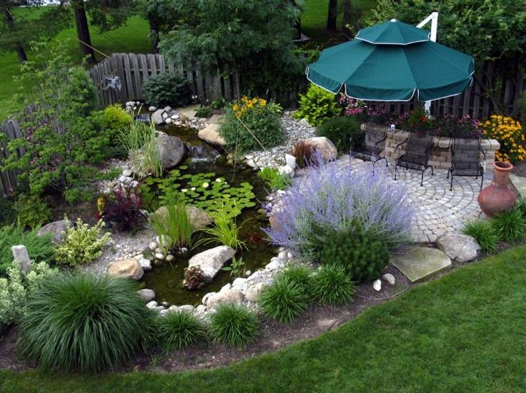Bassin jardin idee amenagement exterieur