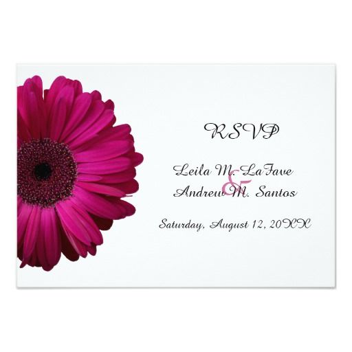 Hot Pink Gerbera Daisy White Wedding Invitation 5 X 7: Best 25+ Gerbera Daisy Wedding Ideas On Pinterest