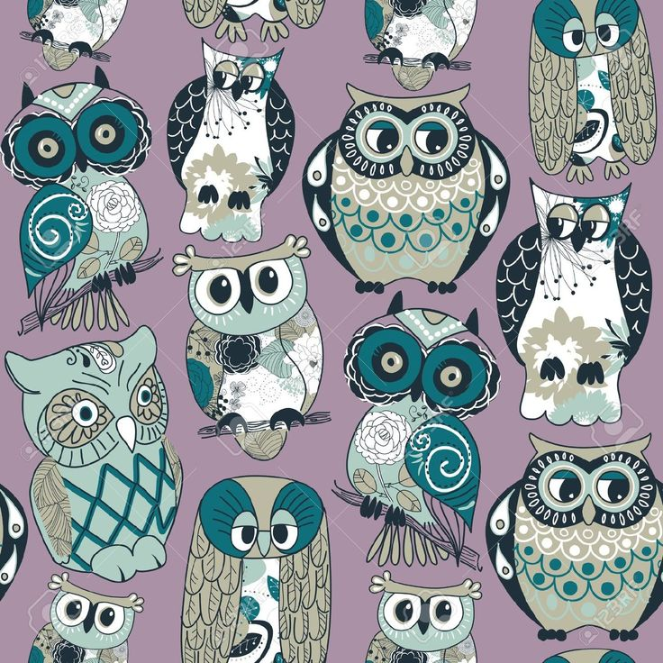 Owl Stock Photos Images, Royalty Free Owl Images And Pictures
