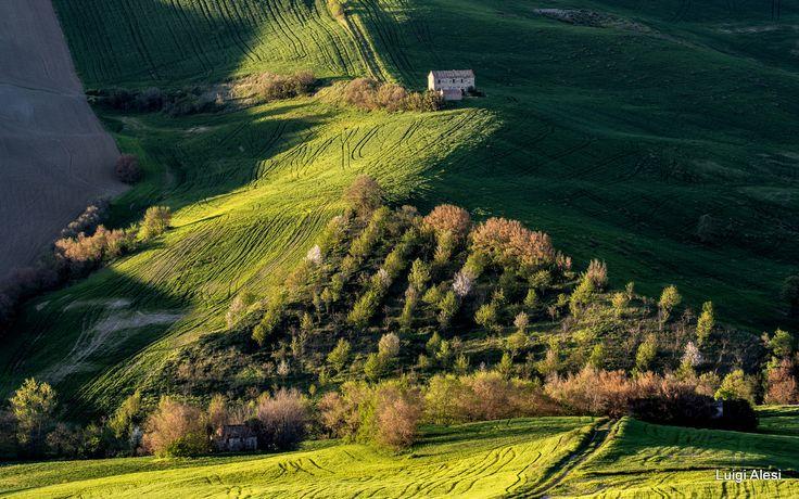 light and shadow - campagna di San Severino Marche