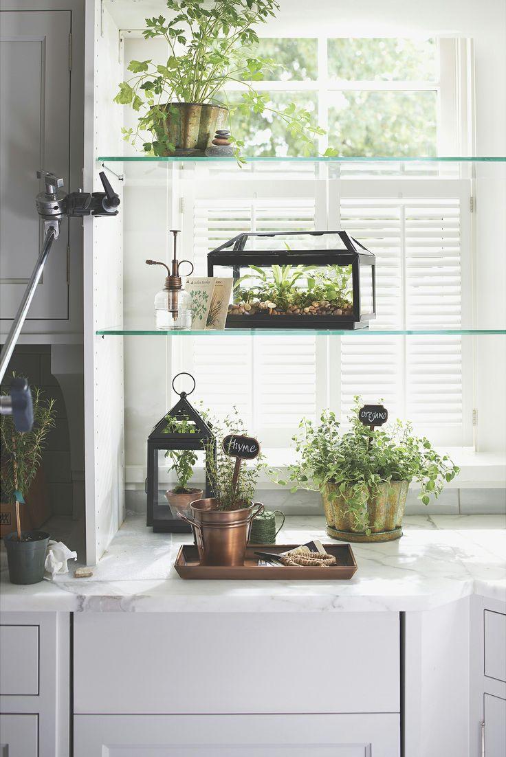 143 Best Garden Terrariums Amp Cloches Images On Pinterest