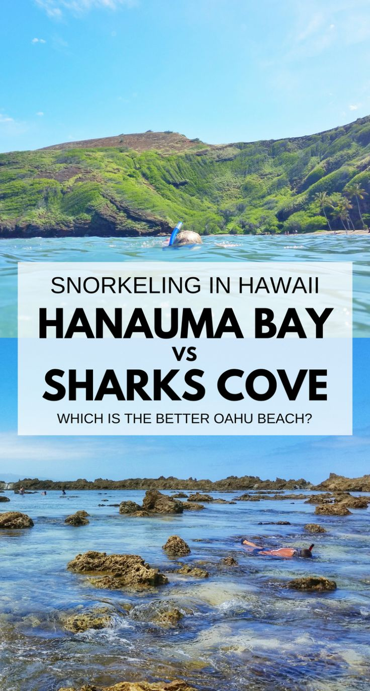 Best beaches, spots for snorkeling in Oahu Hawaii: Hanauma Bay, Shark's Cove on North Shore. US beaches in Hawaii, swimming, snorkeling activities with turtles and fish! Best Oahu beaches give you things to do in Oahu near hiking trails, food, shopping. USA travel destinations for bucket list world adventures when on a budget with Hawaii vacation ideas! Day trip itinerary from Waikiki and Honolulu! Snorkeling gear, what to pack for Hawaii packing list, what to wear in Hawaii... #hawaii #oahu