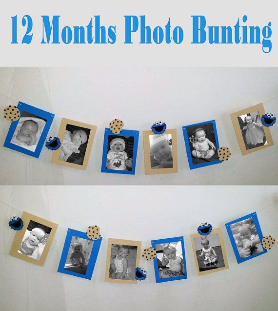 12 Months Photo Cookie Monster 1st Birthday Bunting with 12