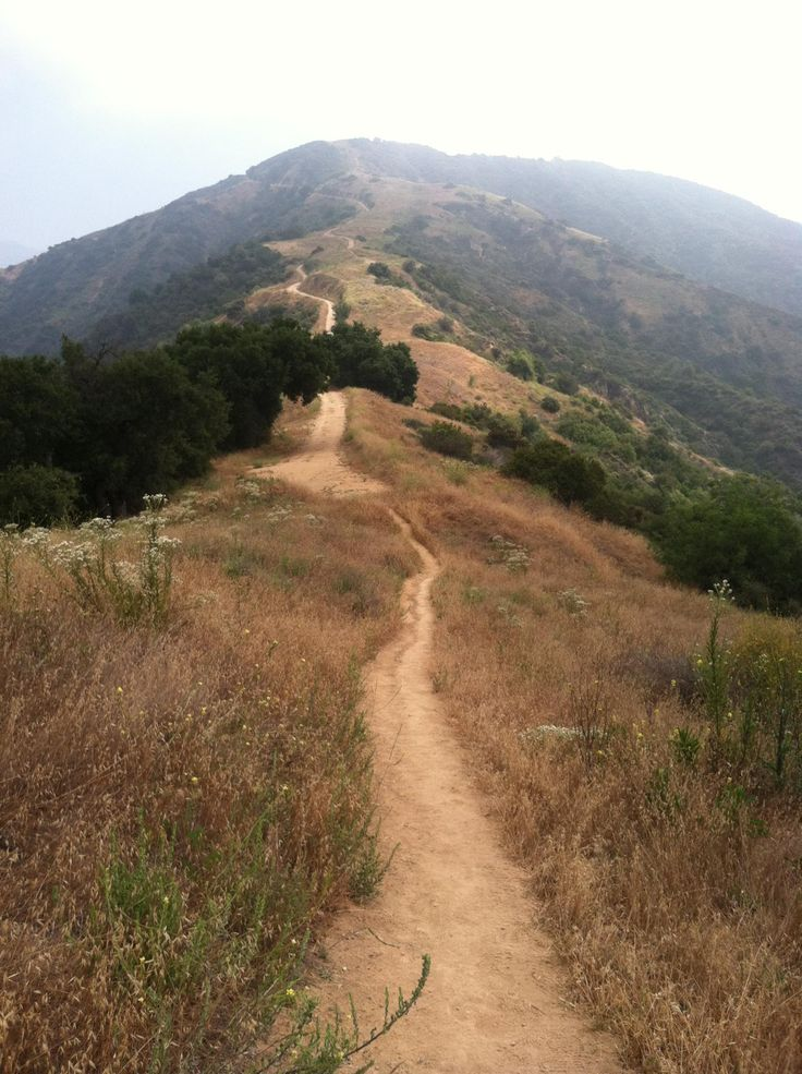 Garcia Trail to Azusa Peak (El Monte, CA): The steep single-track trail gains 1,100 feet in just over 1 mile, ending at the Glendora Ridge Motorway, a dirt fire road that runs east to west. Highlights include an unusually diverse array of spring wildflowers and sweeping views of the San Gabriel Valley. Many trails in the San Gabriel Mountains take their names from the early settlers who owned or maintained property in the foothills.