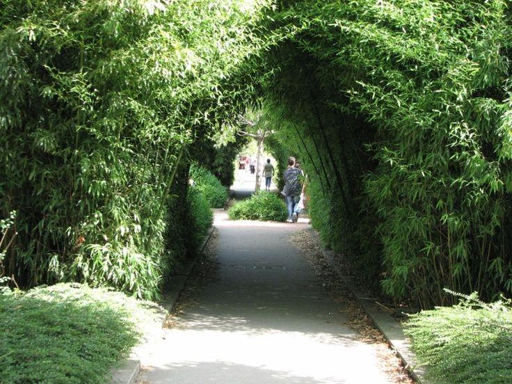 La coulée verte du 12ème est assez peu connue des parisiens. Appelée aussi promenade plantée, elle relie les environs de Bastille à la Porte de Vincennes.