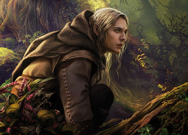 Elfin Lord Of The Rings
