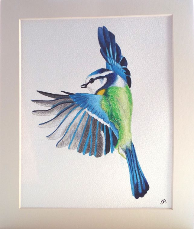 Blue Tit Flapping Original painting £40.00