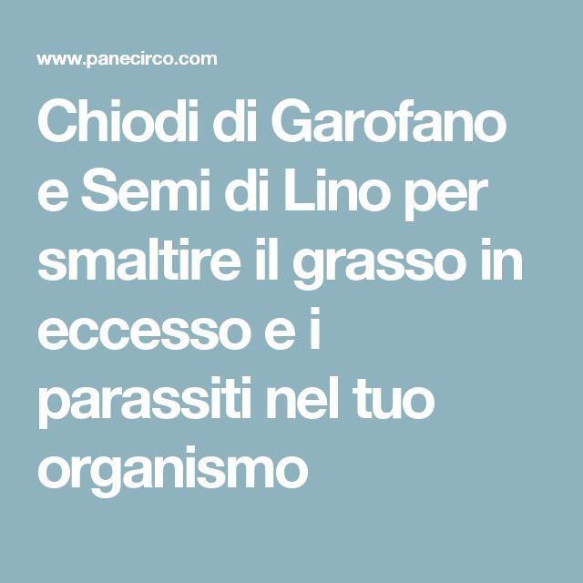 Chiodi di Garofano e Semi di Lino per smaltire il grasso in eccesso e i parassiti nel tuo organismo