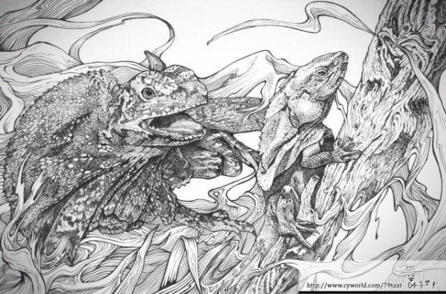 2012 SOKI 공모전 출품작12-목도리 도마뱀