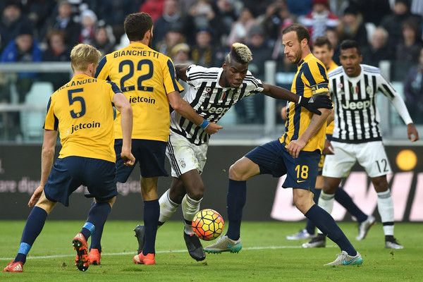 Paul Pogba Photos - Juventus FC v Hellas Verona FC - Serie A - Zimbio