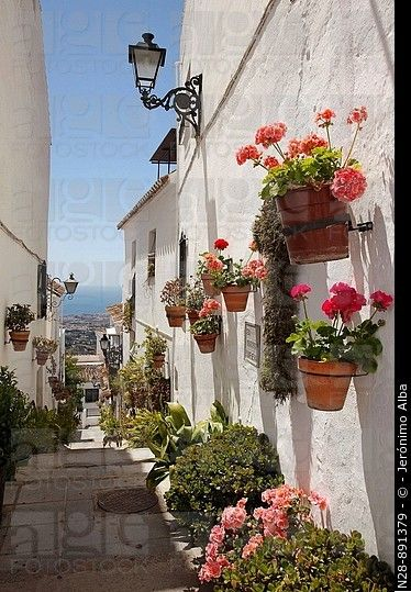 Calle, Mijas, Pueblos Blancos ( 'pueblos blancos'), Costa del Sol, provincia de Málaga, Andalucía, España.