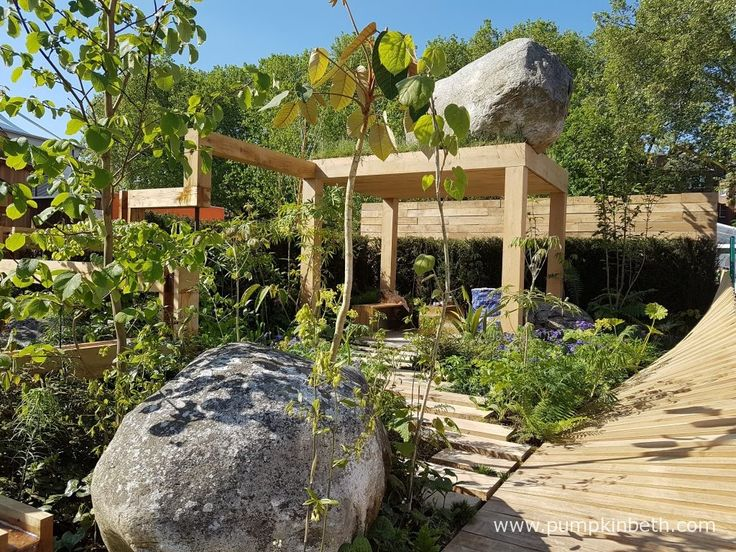 The Garden of Potential was designed by Daniel Bristow and Sarah Page (Propagating Dan) and built by Mark Wallinger. This Fresh Garden was sponsored by GreenWood Forest Park. Featuring the unpopular and almost universally abhorred Leylandii, together with the equally disliked Equisetum arvense, also known as common horsetail, this Fresh Garden provokes its visitors with its inclusion of these unusual show plants and its quirky design. Visitors might be interested to find Diphylleia grayi…
