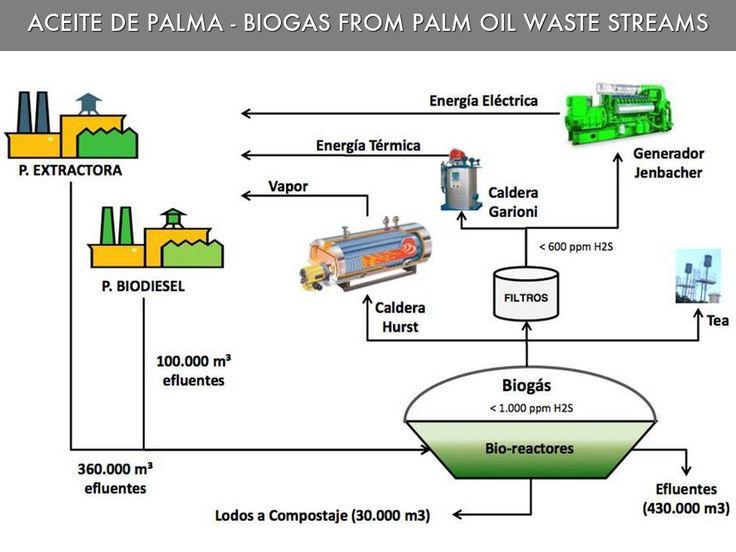 Generacion Electrica Biogas Aceite de Palma Latinoamerica. Palm Oil Biogas Power Generation Latin America. Palm Oil Biogas Power Generation Peru. Palm Oil Biogas Power Generation Colombia. Palm Oil Biogas Power Generation Honduras. Palm Oil Biogas Power Generation Costa Riva.