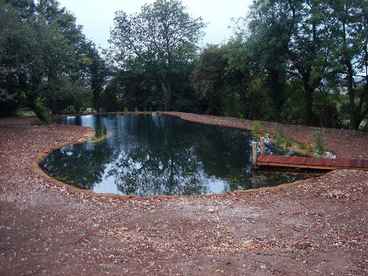 Feb 6, 2020 - Pond Design Warwickshire, Swimming Ponds Staffordshire, Pond Landscapers Warwickshire, Water Garden Design Staffordshire, Aqua Landscape Design