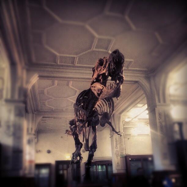 13 best My Instagram Photos images on Pinterest Manchester, The - m bel pallen k chen