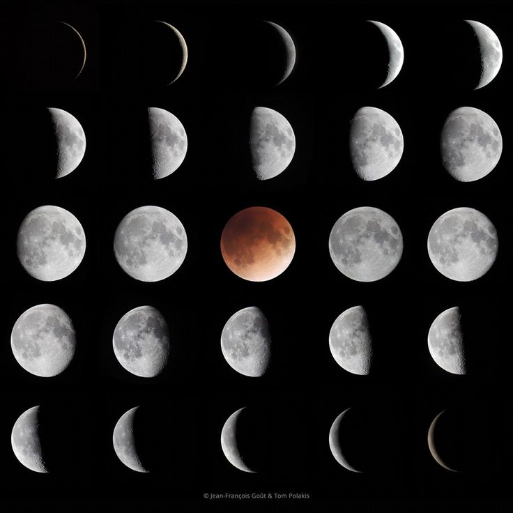 Phases of the Moon : Top left to bottom right, these frames show the range of lunar phases for 25 consecutive nights beginning on January 18, following an almost complete lunation. They skip the 2 days just after and 2 days before New Moon, when the lunar phase is at best a narrow crescent, close to the Sun and really hard to see. (Credit: Jean-Francois Gout, Tom Polakis)