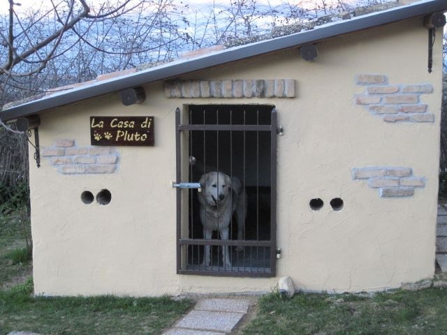 Cuccia alloggio per cani di grossa taglia http://www.tenutasantamaria.it