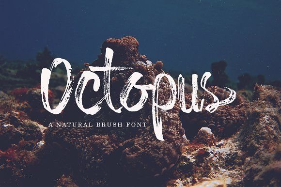octopus by DotHK on @creativemarket