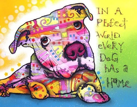 In a perfect world, every dog has a home!: Russo Art, Artworks, Dean Russo, Color, Pitbull, Dean O'Gorman, Pit Bull, The Originals, Animal