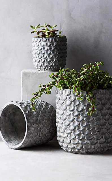 Scalloped Cement Pot #anthrofave
