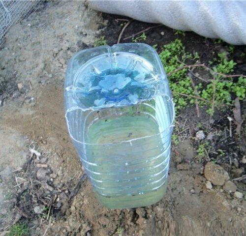 Капельное орошение грядок из пластиковых бутылок » Женский Мир